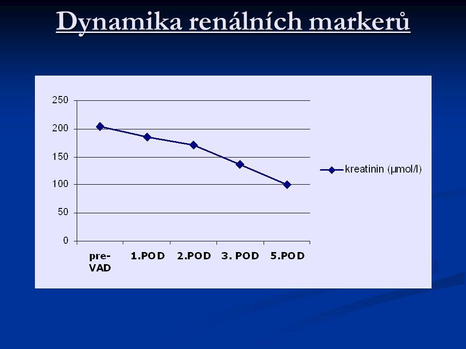 Dynamika renálních markerů