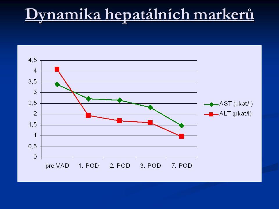 Dynamika hepatálních markerů