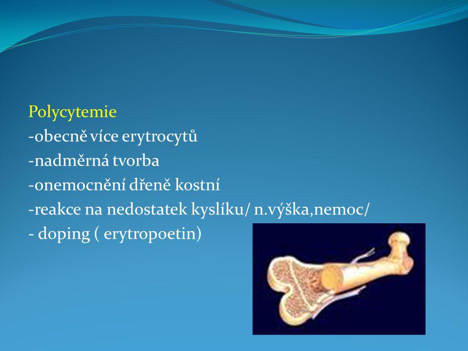 Polycytemie -obecně více erytrocytů -nadměrná tvorba -onemocnění dřeně kostní -reakce na nedostatek kyslíku/ n.výška,nemoc/ - doping ( erytropoetin)