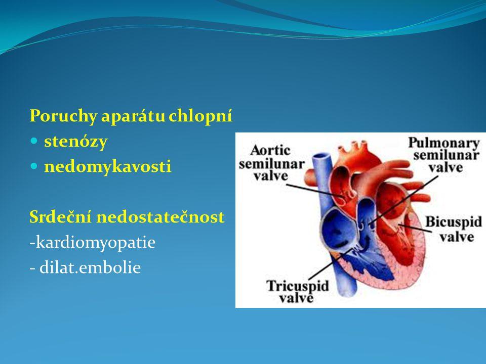 Poruchy aparátu chlopní stenózy nedomykavosti Srdeční nedostatečnost -kardiomyopatie - dilat.embolie