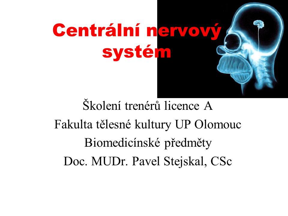 Mozková kůra Limbický systém Bazální ganglia Mezimozek Mozeček Střední mozek Most Varolův Prodloužená mícha Páteřní mícha