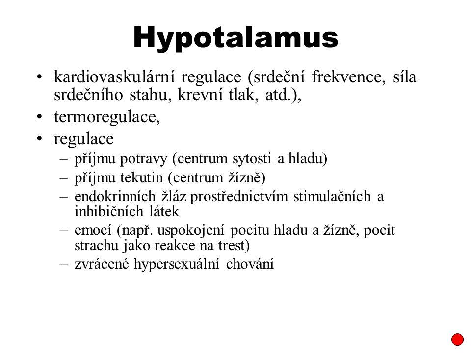 Hypotalamus kardiovaskulární regulace (srdeční frekvence, síla srdečního stahu, krevní tlak, atd.), termoregulace, regulace –příjmu potravy (centrum s