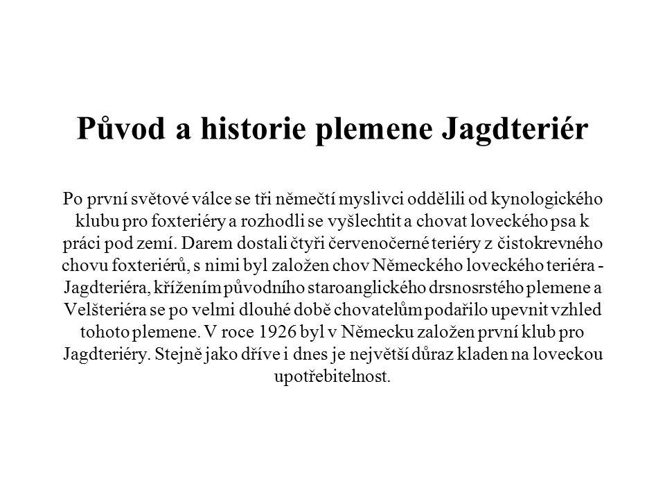 Původ a historie plemene Jagdteriér Po první světové válce se tři němečtí myslivci oddělili od kynologického klubu pro foxteriéry a rozhodli se vyšlec