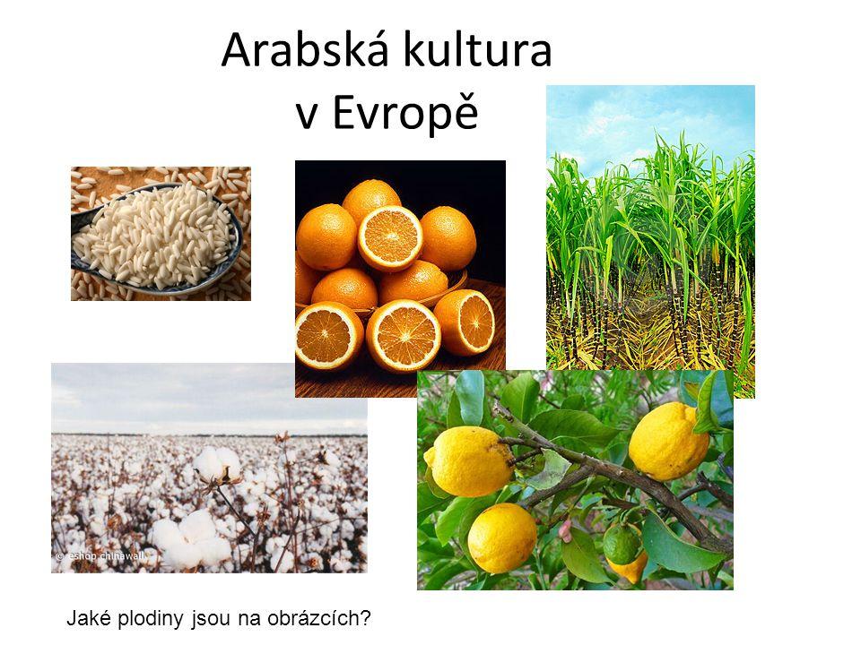 Arabská kultura v Evropě Jaké plodiny jsou na obrázcích?