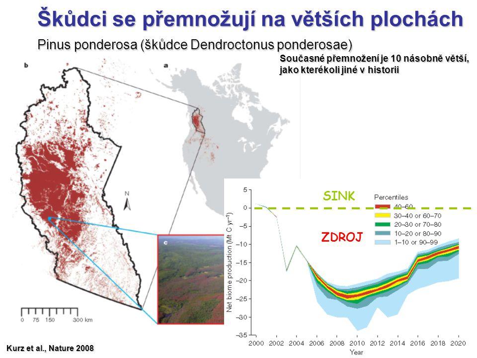 Škůdci se přemnožují na větších plochách Pinus ponderosa (škůdce Dendroctonus ponderosae) Kurz et al., Nature 2008 SINK ZDROJ Současné přemnožení je 1