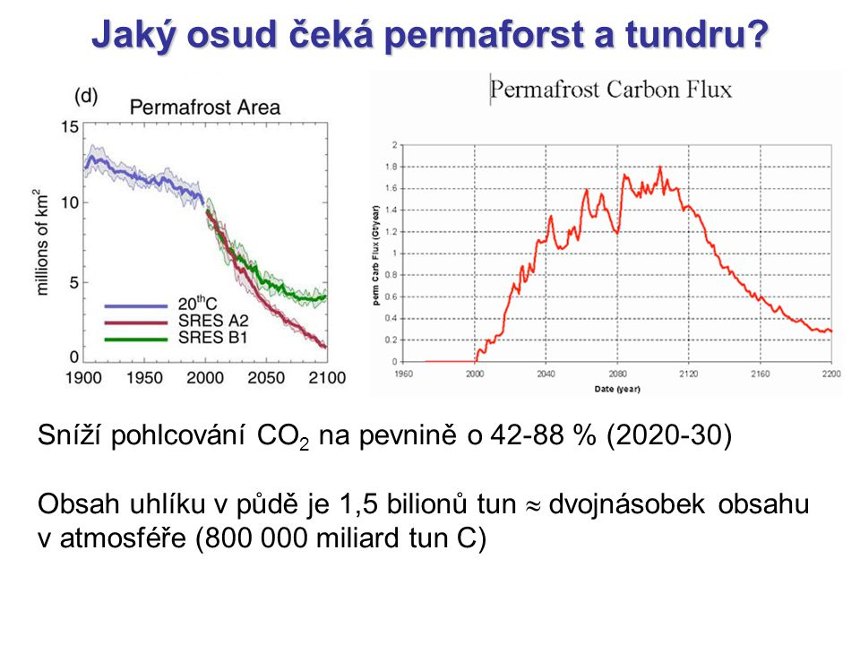 Jaký osud čeká permaforst a tundru? Sníží pohlcování CO 2 na pevnině o 42-88 % (2020-30) Obsah uhlíku v půdě je 1,5 bilionů tun  dvojnásobek obsahu v
