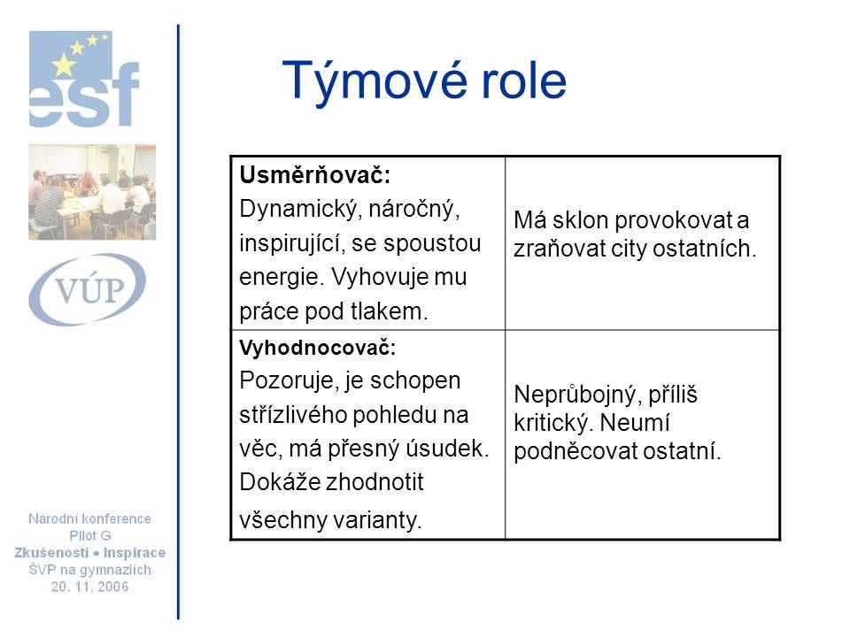 Týmové role Stmelovač: Týmový pracovník, kooperativní, mírný, vnímavý diplomat.