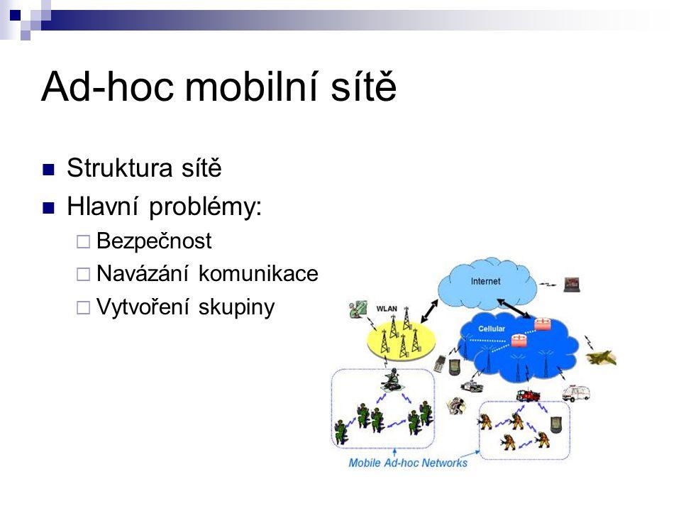 Struktura sítě Hlavní problémy:  Bezpečnost  Navázání komunikace  Vytvoření skupiny Ad-hoc mobilní sítě