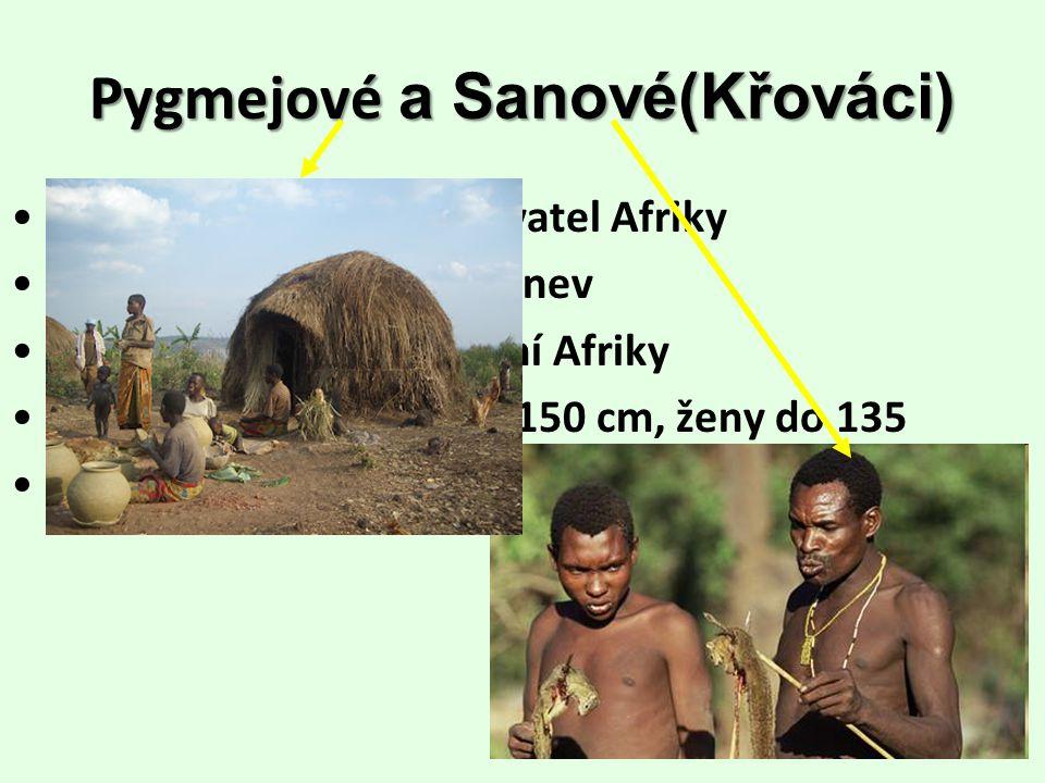Pygmejové a Sanové(Křováci) potomci původních obyvatel Afriky Pygmejové – Konžská pánev Sanové – polopouště jižní Afriky malá postava – muži do 150 cm, ženy do 135 živí se lovem a sběrem kořínků