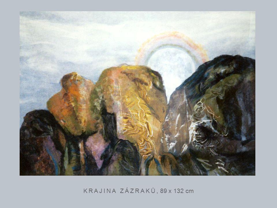 KRAJINA ZÁZRAKŮ, 89 x 132 cm