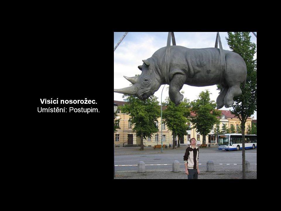 Visící nosorožec. Umístění: Postupim.