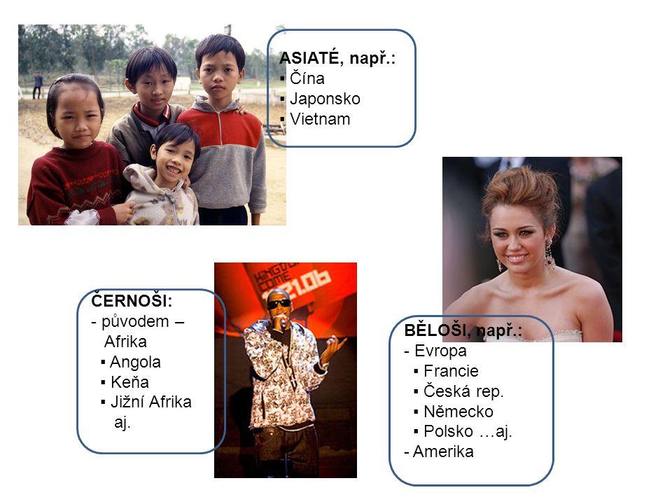 ASIATÉ, např.: ▪ Čína ▪ Japonsko ▪ Vietnam BĚLOŠI, např.: - Evropa ▪ Francie ▪ Česká rep.