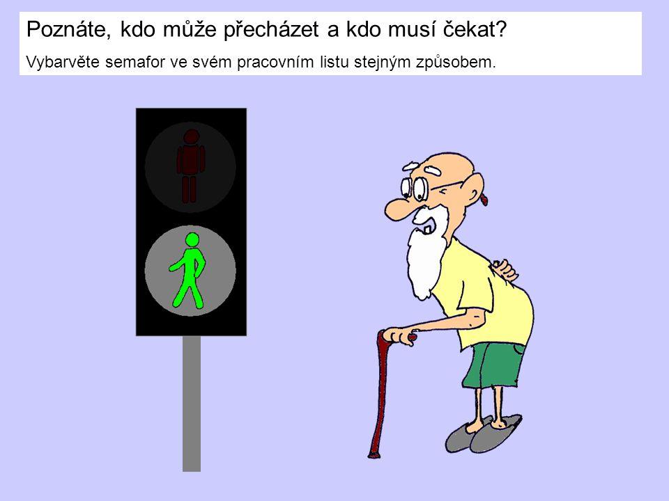 Na semaforu však nikdy nesvítí obě postavičky najednou.