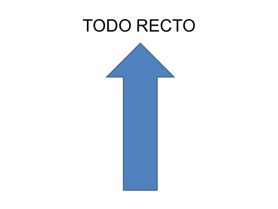 TODO RECTO