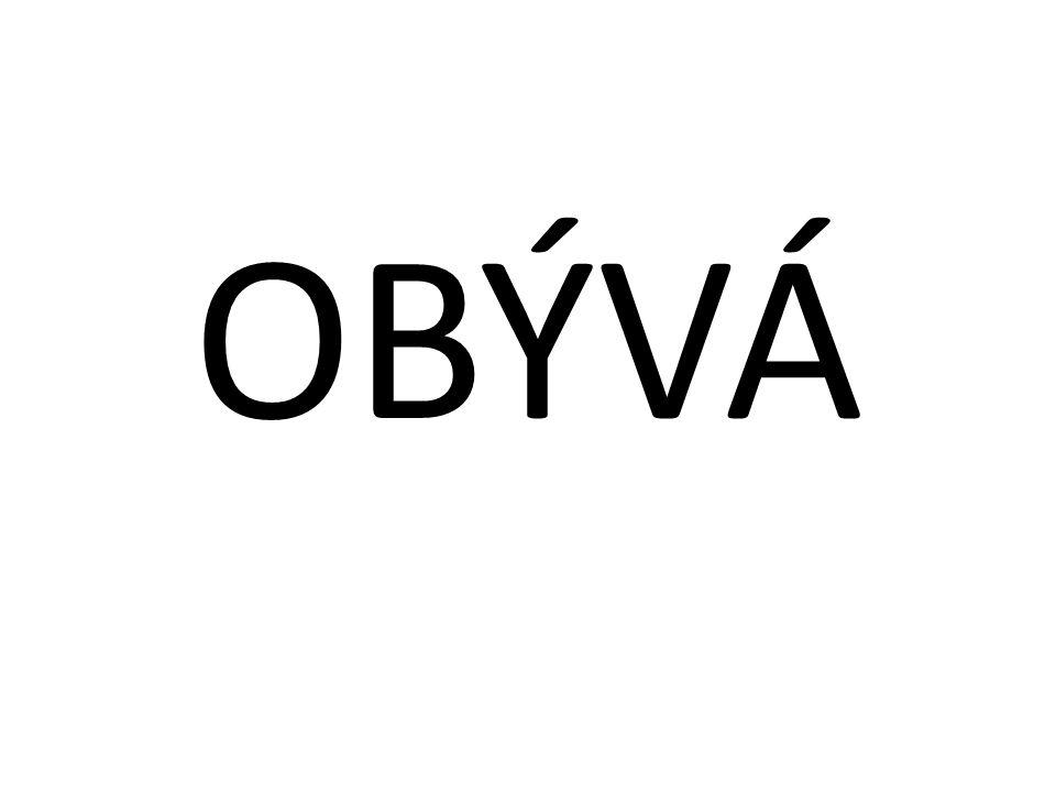 OBÝVÁ