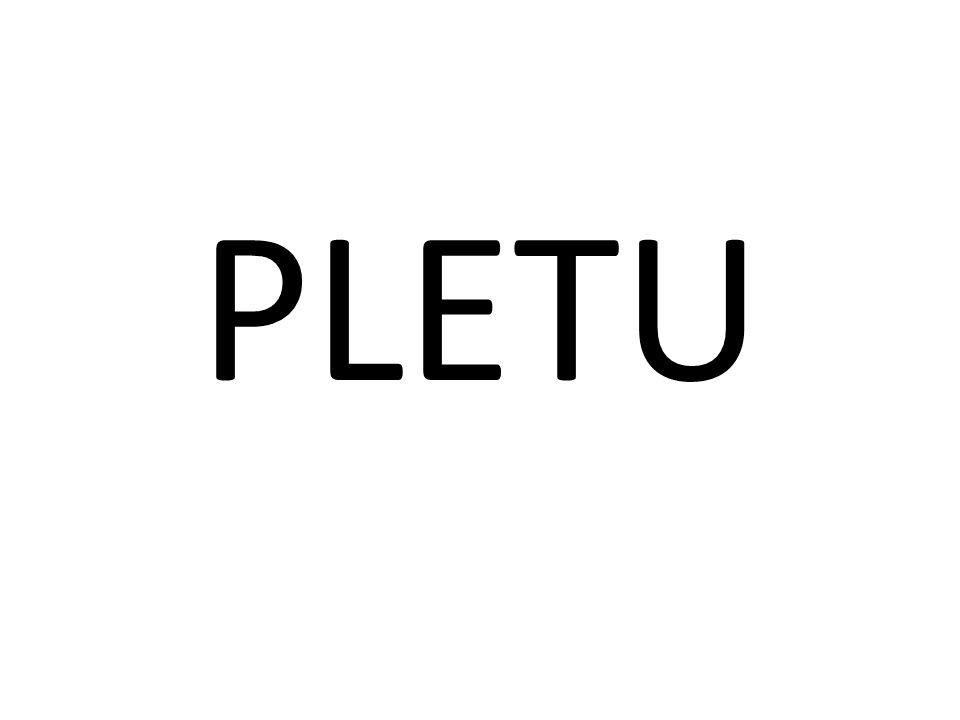 PLETU