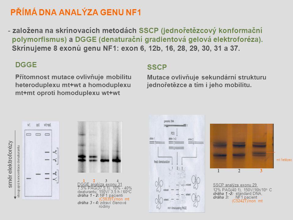PŘÍMÁ DNA ANALÝZA GENU NF1 SSCP Mutace ovlivňuje sekundární strukturu jednořetězce a tím i jeho mobilitu. - založena na skrínovacích metodách SSCP (je