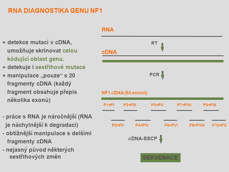"""RNA DIAGNOSTIKA GENU NF1 + detekce mutací v cDNA, umožňuje skrínovat celou kódující oblast genu. + detekuje i sestřihové mutace + manipulace """"pouze"""" s"""