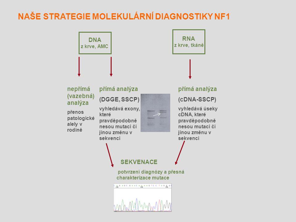 přímá analýza (cDNA-SSCP) vyhledává úseky cDNA, které pravděpodobně nesou mutaci či jinou změnu v sekvenci DNA z krve, AMC nepřímá (vazebná) analýza p