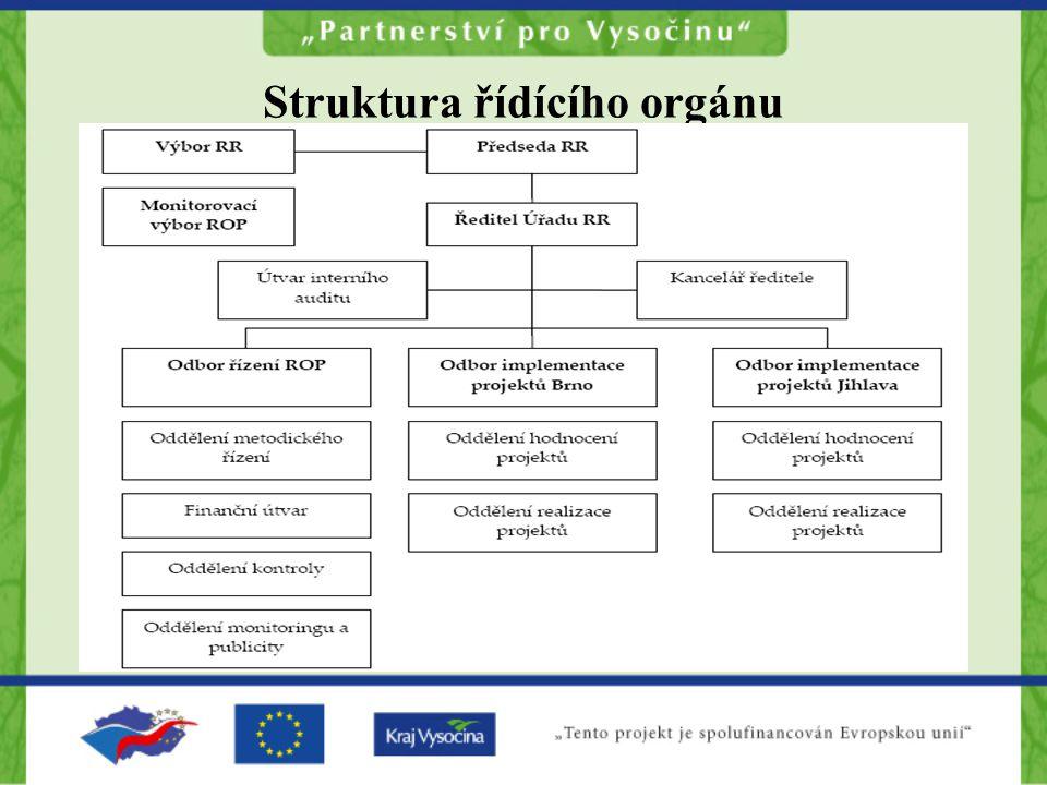 Struktura řídícího orgánu