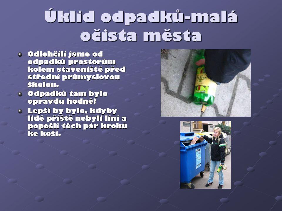 Úklid odpadků-malá očista města Odlehčili jsme od odpadků prostorům kolem staveniště před střední průmyslovou školou. Odpadků tam bylo opravdu hodně!