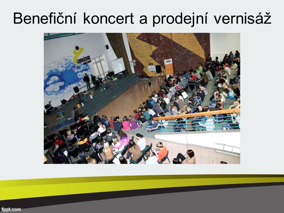 Benefiční koncert a prodejní vernisáž