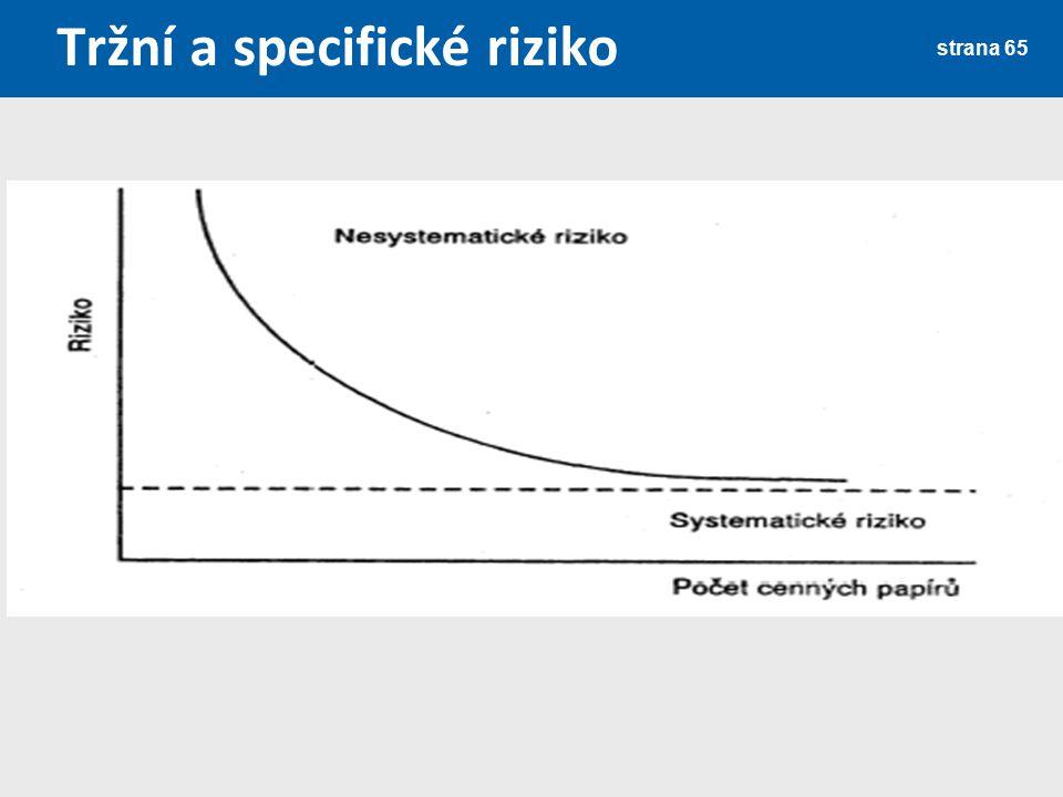 Tržní a specifické riziko strana 65