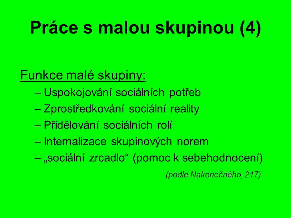 Práce s malou skupinou (4) Funkce malé skupiny: –Uspokojování sociálních potřeb –Zprostředkování sociální reality –Přidělování sociálních rolí –Intern