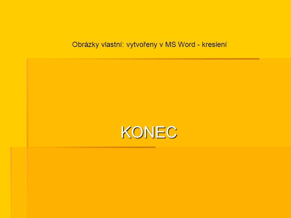 KONEC Obrázky vlastní: vytvořeny v MS Word - kreslení