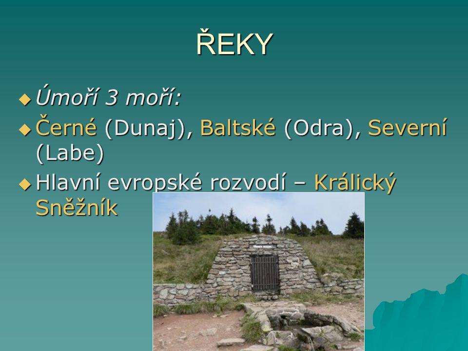 ŘEKY  Úmoří 3 moří:  Černé (Dunaj), Baltské (Odra), Severní (Labe)  Hlavní evropské rozvodí – Králický Sněžník