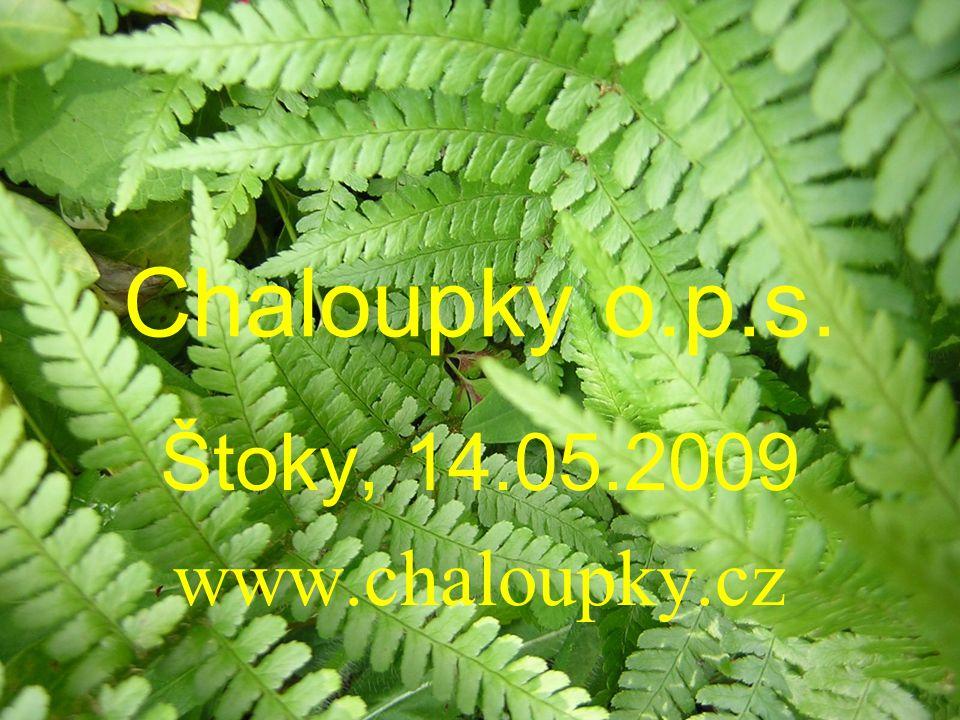 Chaloupky o.p.s. Štoky, 14.05.2009 www.chaloupky.cz