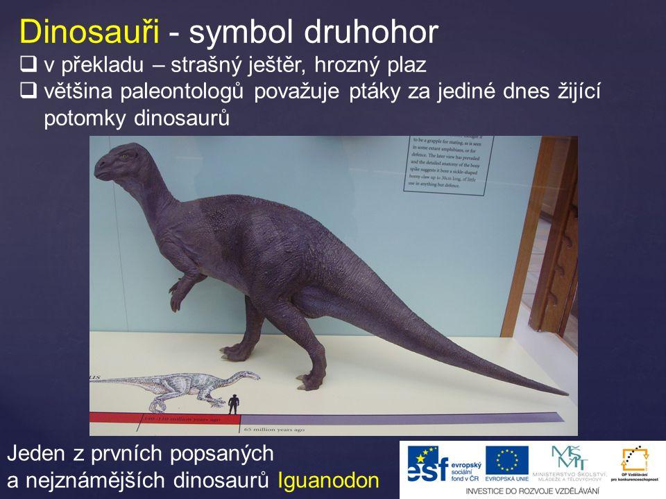 Dinosauři - symbol druhohor  v překladu – strašný ještěr, hrozný plaz  většina paleontologů považuje ptáky za jediné dnes žijící potomky dinosaurů Jeden z prvních popsaných a nejznámějších dinosaurů Iguanodon