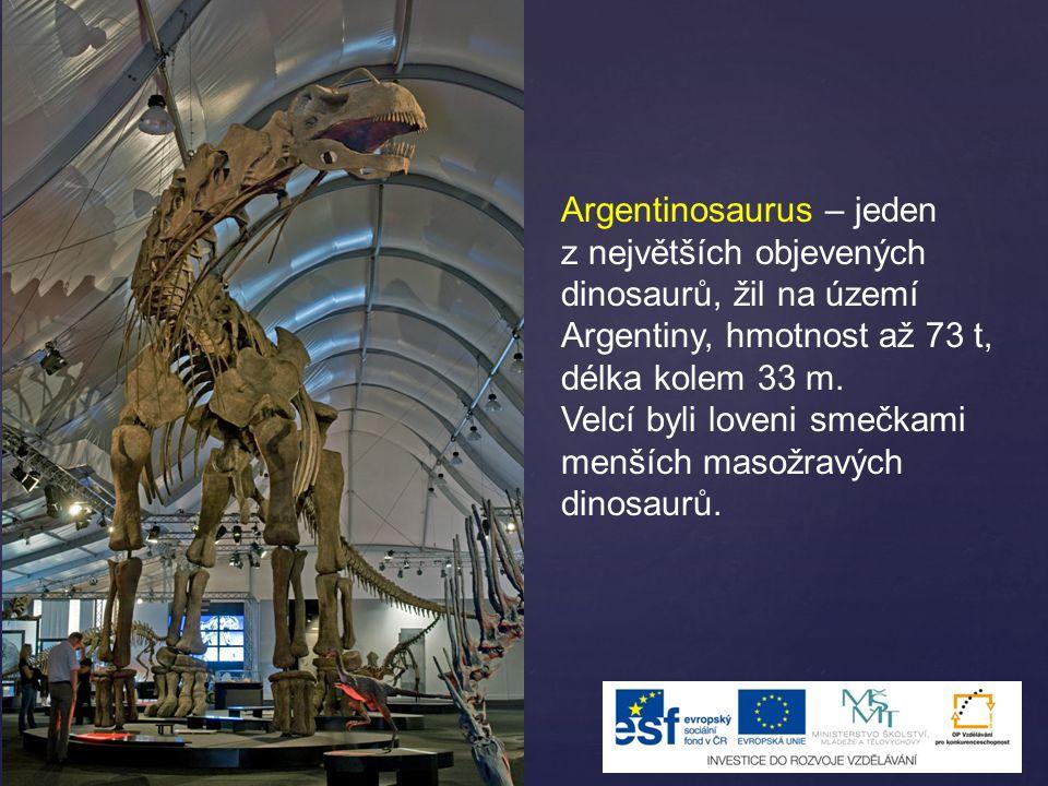 Argentinosaurus – jeden z největších objevených dinosaurů, žil na území Argentiny, hmotnost až 73 t, délka kolem 33 m. Velcí byli loveni smečkami menš