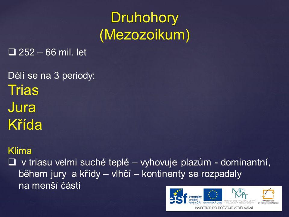 Druhohory (Mezozoikum)  252 – 66 mil.