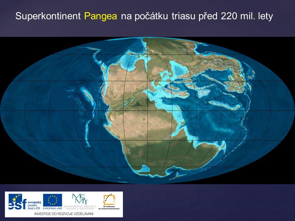 Postupně se rozpadal a formoval do dnes známých kontinentů – svrchní křída – 90 mil. let.