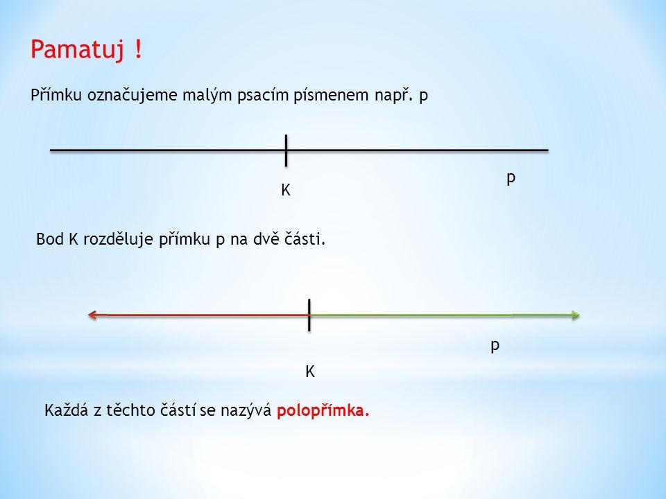 Přímku označujeme malým psacím písmenem např.p Pamatuj .