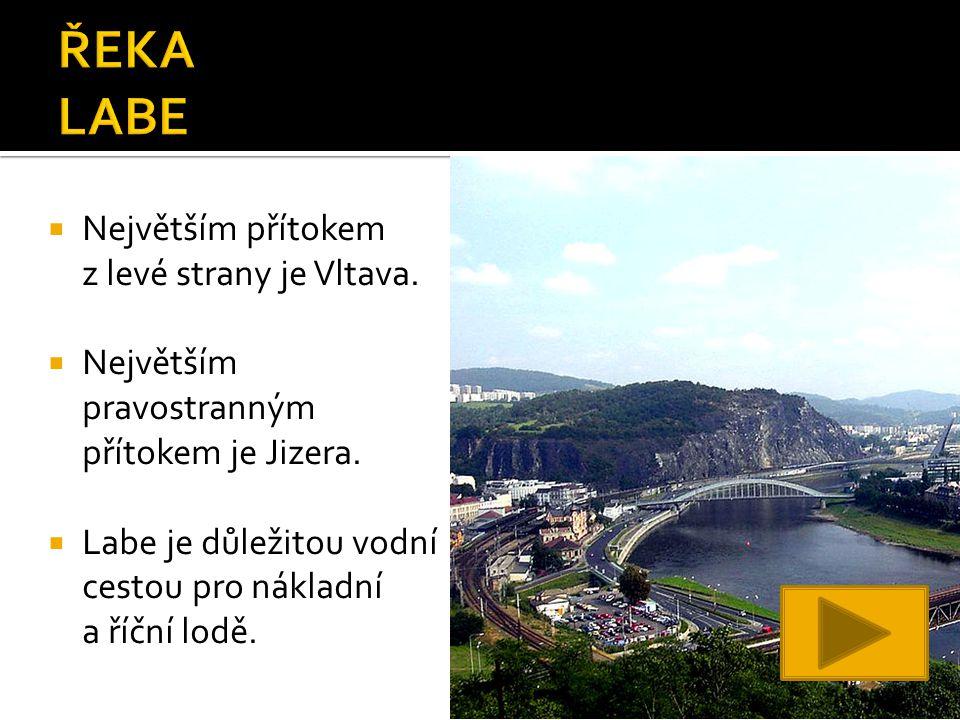  Největším přítokem z levé strany je Vltava.  Největším pravostranným přítokem je Jizera.