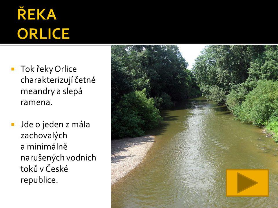  Tok řeky Orlice charakterizují četné meandry a slepá ramena.