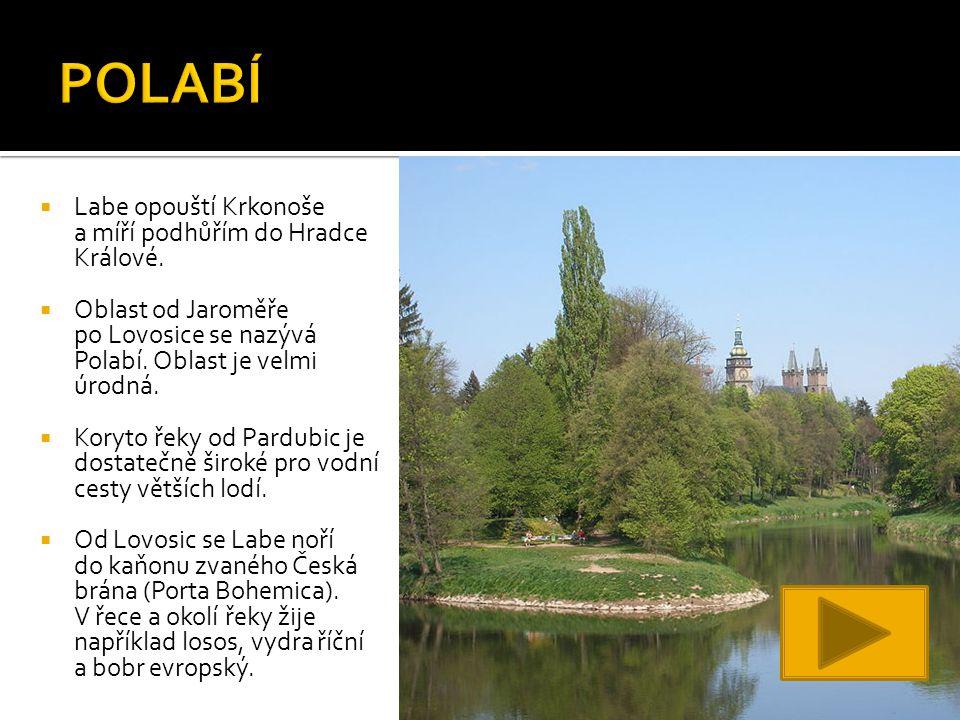  Labe opouští Krkonoše a míří podhůřím do Hradce Králové.