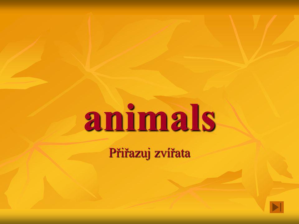 animals Přiřazuj zvířata