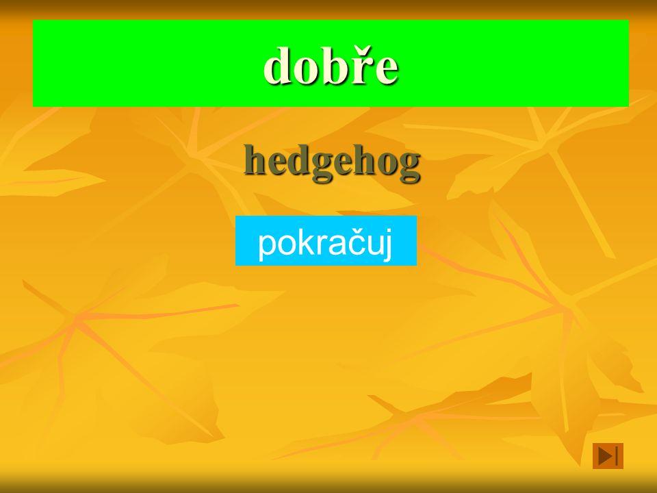 Na podzim se zahrabává do listí a má bodliny fish hedgehog mouse Vyber zvíře a klikni na obdélníček