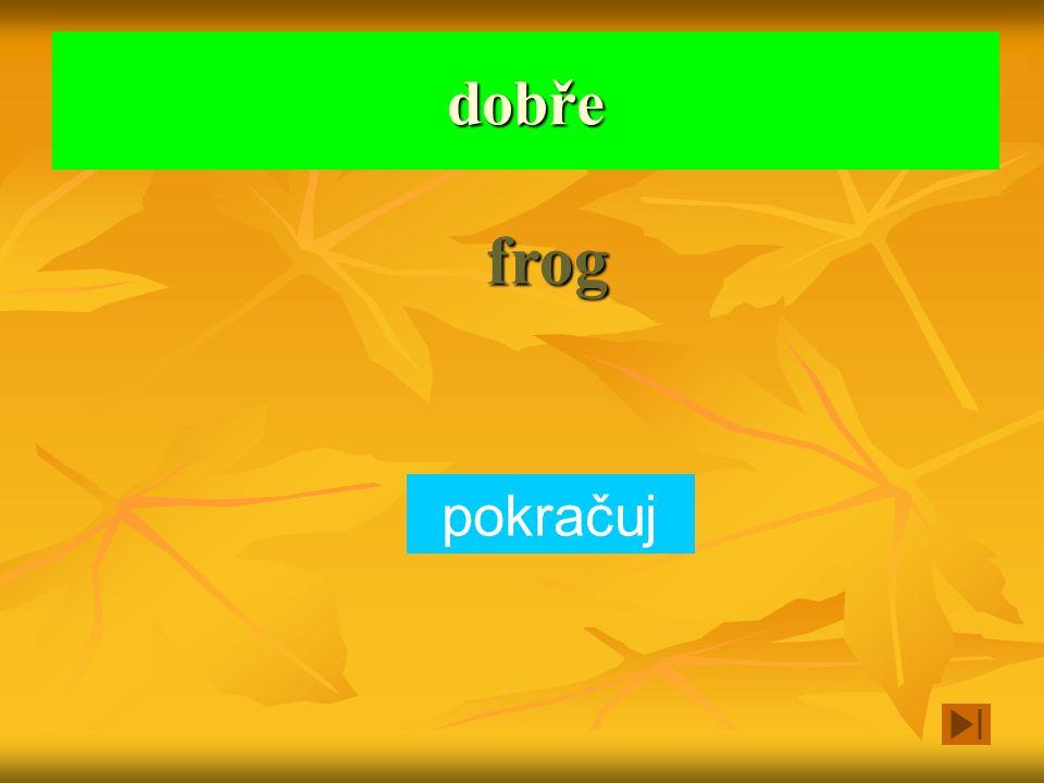 Je to zelené a skáče a kváká to. dog fish frog Vyber zvíře a klikni na obdélníček