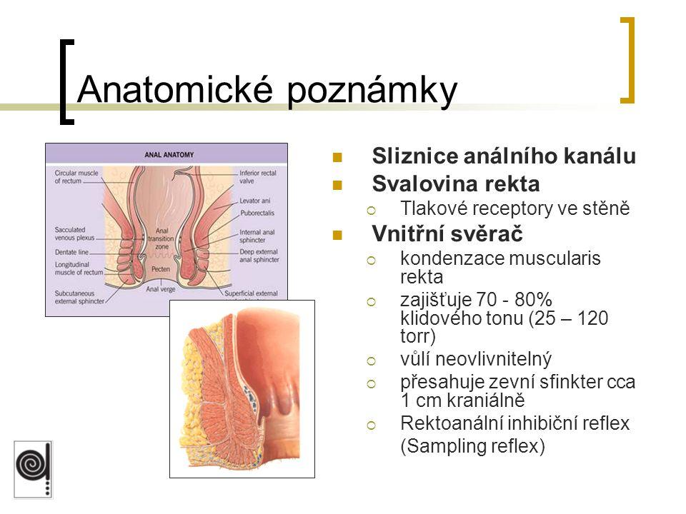 Sliznice análního kanálu Svalovina rekta  Tlakové receptory ve stěně Vnitřní svěrač  kondenzace muscularis rekta  zajišťuje 70 - 80% klidového tonu