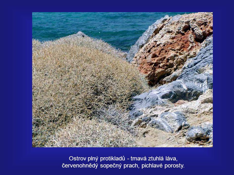 Ostrov plný protikladů - tmavá ztuhlá láva, červenohnědý sopečný prach, pichlavé porosty.