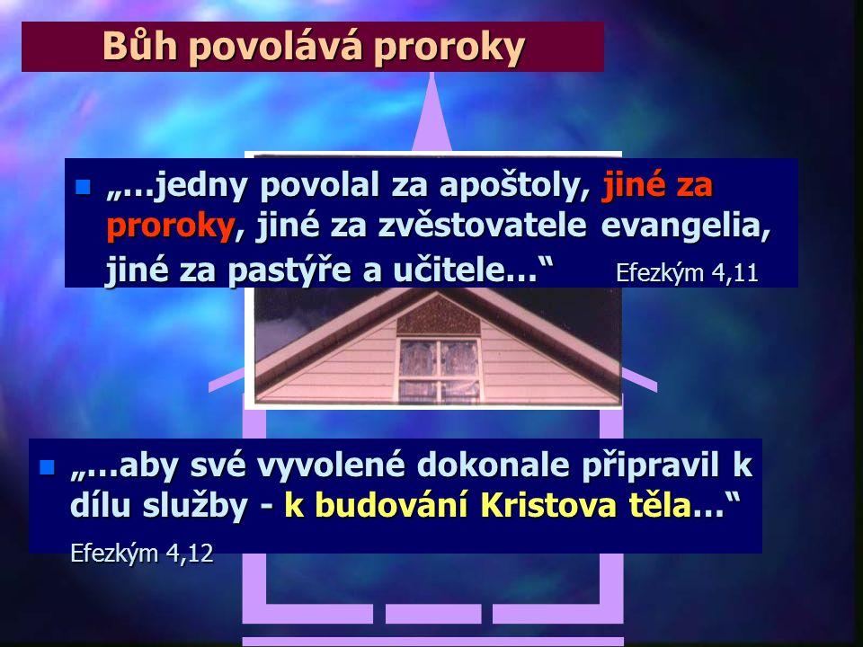"""Dar proroctví v novozákonní době n JAN KŘTITEL: - """"Nebo proč jste vyšli? Vidět proroka? Ano, pravím vám, a víc než proroka. To je ten, o němž je psáno"""