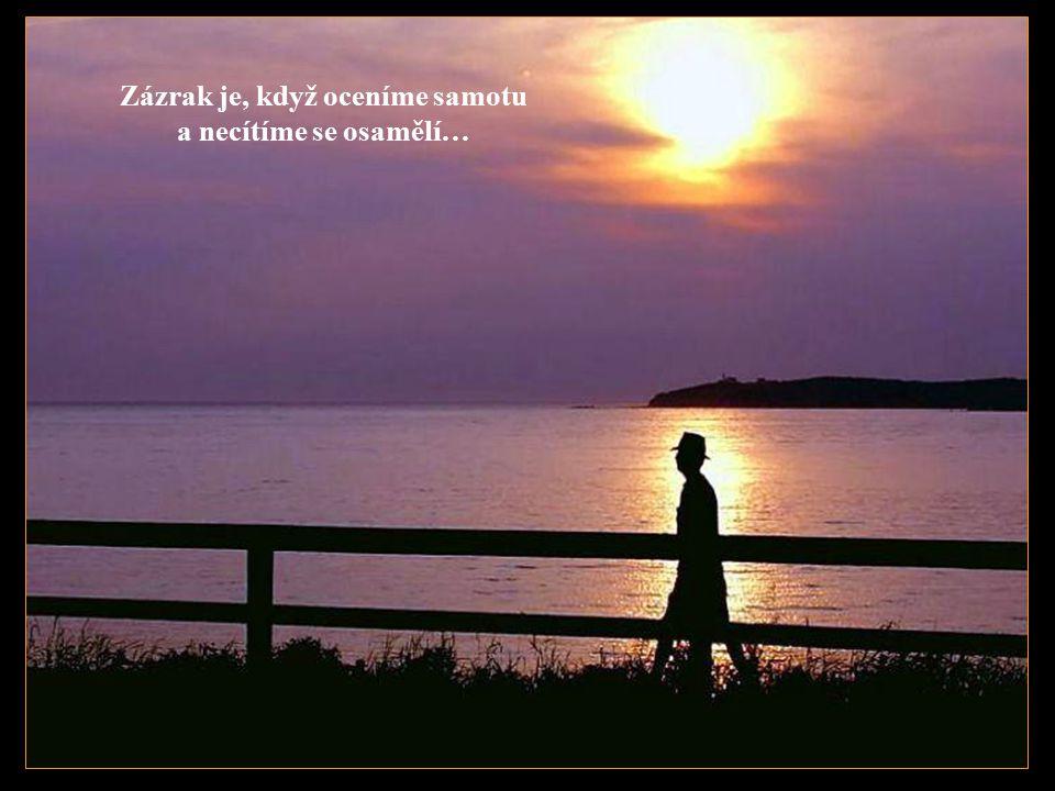 Zázrak je, když ostny chrání, ale nepíchají…