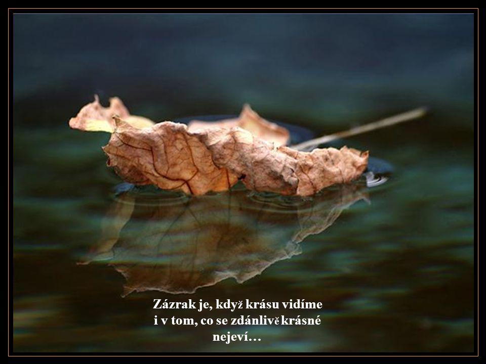 Zázrak je, kdy ž se nenecháme pohltit komplikovaností ž ivota…
