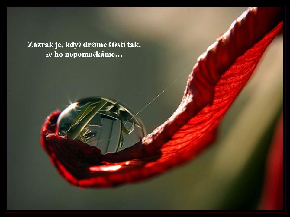 Zázrak je, kdy ž si nedovolíme nechat se unést vztekem…