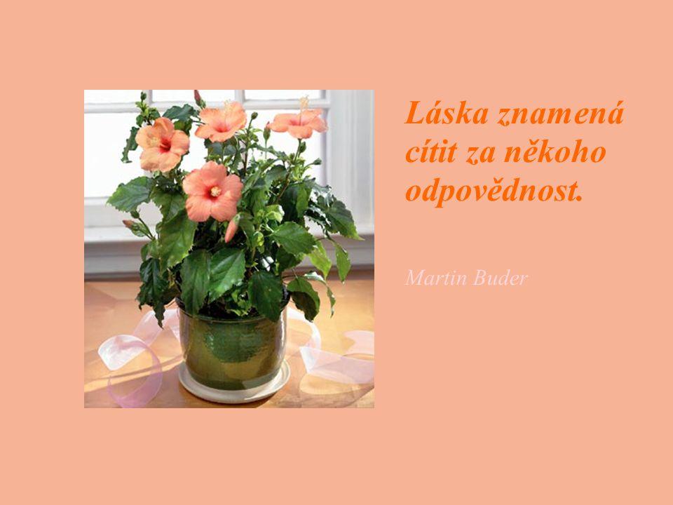 Láska znamená cítit za někoho odpovědnost. Martin Buder