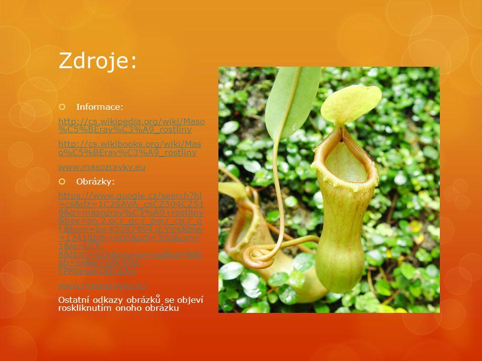 Zdroje:  Informace: http://cs.wikipedia.org/wiki/Maso %C5%BErav%C3%A9_rostliny http://cs.wikibooks.org/wiki/Mas o%C5%BErav%C3%A9_rostliny www.masozra